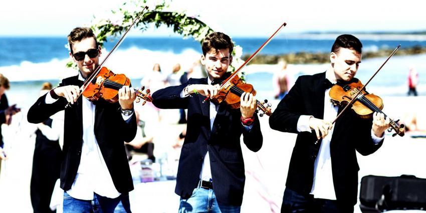 Künstler der Woche Violin Guys