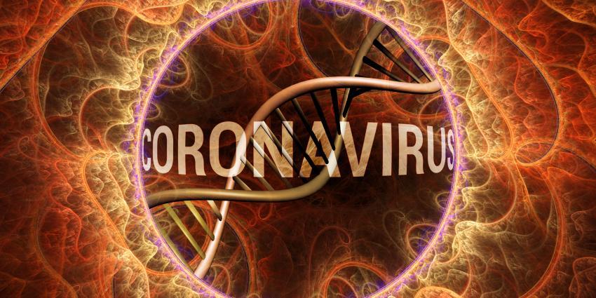 Bild Coronavirus