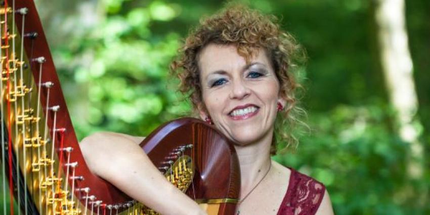 Künstlerin der Woche: Anne Kox-Schindelin