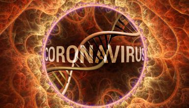 Corona-Ticker: Soforthilfen für Künstler