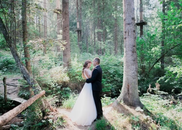 Waldhochzeit-Hochzeitwald