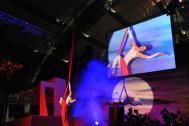 mira-mas Luftartistik - die Artistenshow