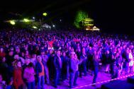 Helen Pfaff & Friends- Partyband, Jazzband, Akkustikband, DJ, Hochzeitsband, Sängerin, Bern, Zürich