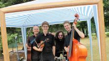 Pizzicato Blue Acoustic Band