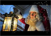 Die Professor Knaller Show / Weihnachtsmann Dresden