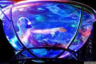SVETLANA arts - Luftartistik & Wasserakrobatik