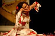 Natasha Bastrón - Showtanz, Bauchtanz, Flashmobs, Folklore, Kinderdisco