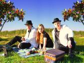 Summer Sun Band