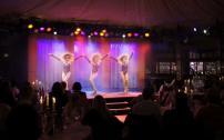 Cabaretshow