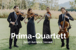 Das Prima-Streichquartett