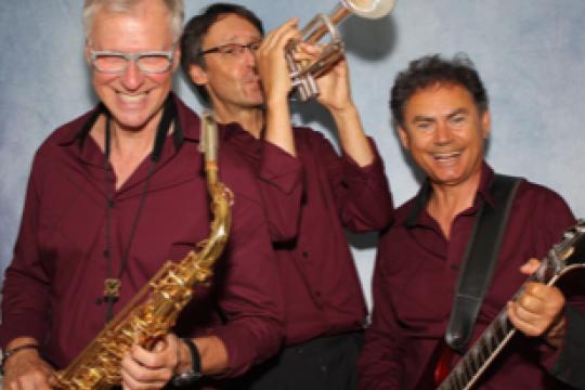 Albatros Hochzeitsband / Partyband, Trio oder Duo
