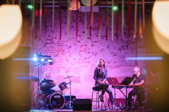 Goosebumpmusic (Die Kathy Reed Band)