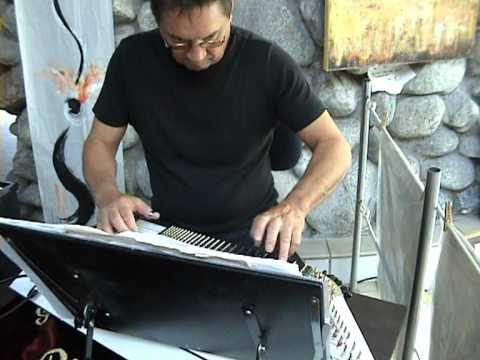 Video: e-Zither Medley