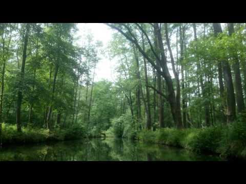 Video: Von Fremden Ländern Und Menschen