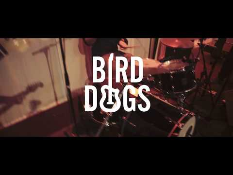 Video: BIRDDOGS | Partyband und Coverband Berlin