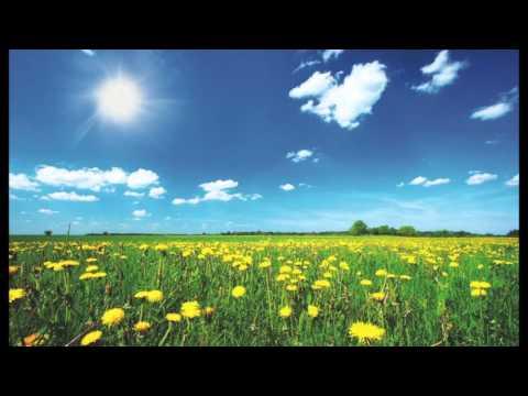 Video: What A Wonderful World