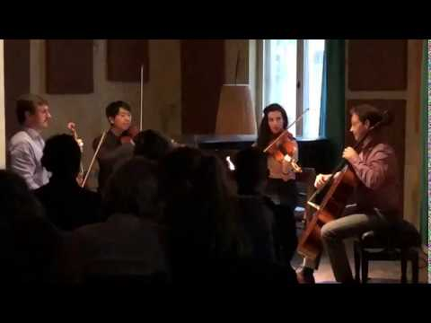 Video: Elvis - Can't Help Falling In Love, Streichquartett Cover