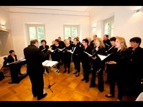 Video: Kirchenchor Hausen am Tann-Just a Gigolo