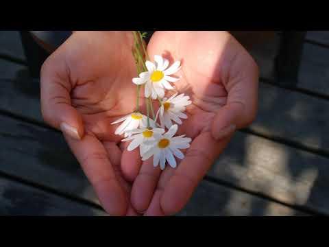 Video: Ein Geschenk - Trauung