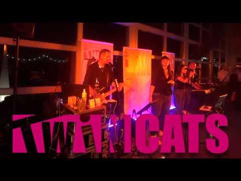 Video: Dinner Music - Hochzeitsfeier 2020 / Twincats classic