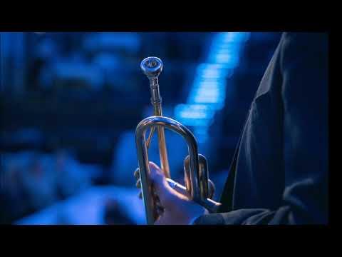 Video: SOLO Trompete - Hallelujah