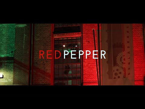 Video: REDPEPPER Demovideo 2019