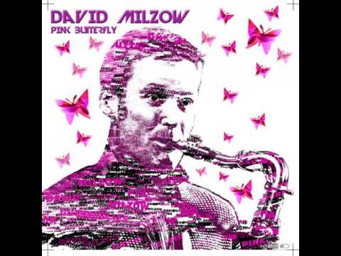 Video: In The Summertime, feat. David Milzow- Sax meets Clubmusic