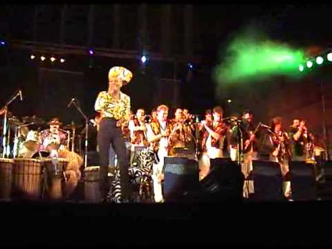 Video: Bwalya. Safari Afrique Show