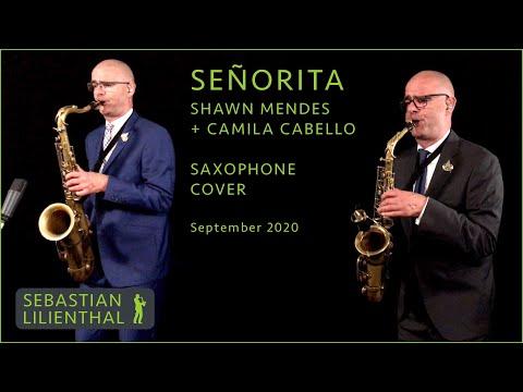 Video: Señorita - Shawn Mendes + Camila Cabello - Saxophonist Sebastian Lilienthal