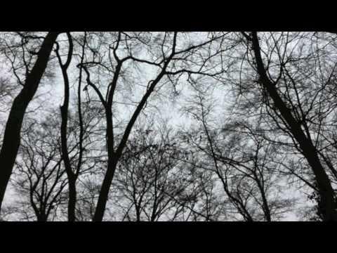 Video: Norwegian Wood (Beatles) - Instrumental Version Akustik JukeBox