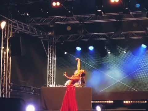 Video: Picknicknächte Ingolstadt